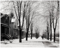 photo-lycurgus-s-glover-winter-morning-detroit-corner-of-second-and-canfield-avenues-1905
