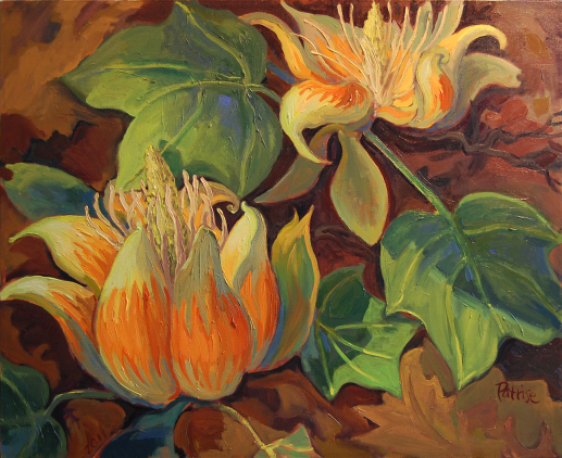 tulippoplarblossomsw